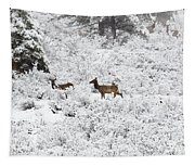 Elk In Deep Snow In The Pike National Forest Tapestry