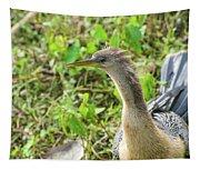 Female Anhinga Tapestry