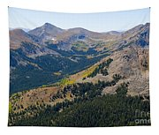 Autumn Tundra Turning To Gold  On Mount Yale Colorado Tapestry