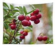 Lingonberry Tapestry