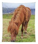 A Beautiful Red Mane On An Icelandic Horse Tapestry