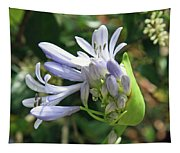 A Blooming Bud Tapestry