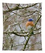 A Bluebird  Tapestry
