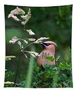 A Cedar Waxwing Facing Left Tapestry