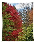 A Collection Of Fall Colours Tapestry