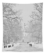 A Colonial White Winter Tapestry