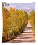 A Colorful Country Road Rocky Mountain Autumn View  Tapestry
