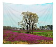 A Colorful Field Tapestry