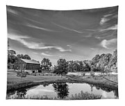 A Country Place Bw Tapestry