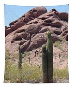 A Couple Of Cacti In Phoenix Tapestry