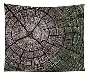 A Cut Above - Patterns Of A Tree Trunk Sliced Across Tapestry