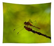 A Dragonfly Smile Tapestry