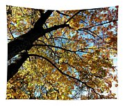A Falling Maple Leaf Tapestry