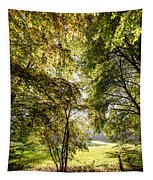 a Forest part 2 Tapestry