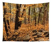 A Golden Autumn Forest  Tapestry