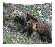 A Grizzly Moment Tapestry