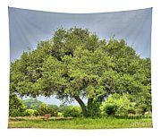 A Hill Country Moment Tapestry