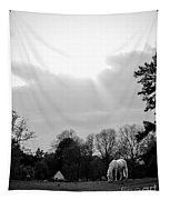 A Horse In Light Tapestry