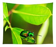 A Little Red Beatle Tapestry