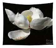 A Magnolia Flower Tapestry