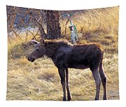 A Moose In Early Spring  Tapestry