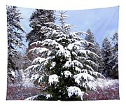 A Peaceful Winter Day Tapestry