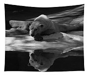 A Polar Bear Reflects Tapestry