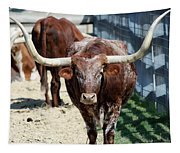 A Portrait Of A Texas Longhorn Steer Tapestry