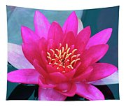 A Red And Yellow Water Lily Flower Tapestry