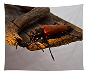 A Red Glowing Beetle Tapestry