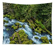 A River's Path Tapestry