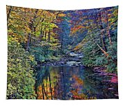A Smoky Mountain Autumn Tapestry