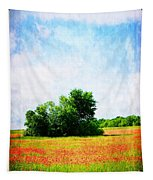 A Spring Day In Texas Tapestry