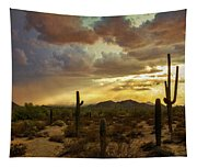 A Summer Evening In The Sonoran  Tapestry