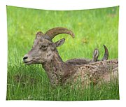 A Time To Rest Tapestry