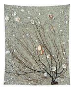 A Tree On The Beach - Sea Weed And Shells Tapestry