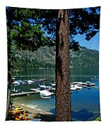 A Trees View Of Fallen Leaf Lake Tapestry