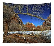 A View In Zion Tapestry