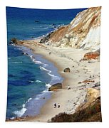 A Walk Along Aquinnah Beach Tapestry