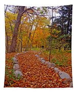 A Walk Along Natures Path Tapestry