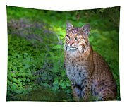 A Watchful Eye Tapestry