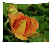 A Wet Rose  Tapestry