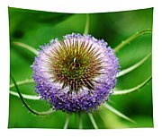 A Wild And Prickly Teasel Tapestry
