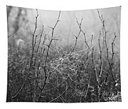 A Winter Web Tapestry