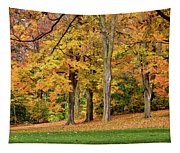 A Wonderful Walk In The Park Tapestry