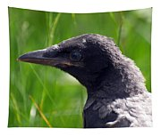 A Young Crow Tapestry