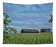 Abandoned In Grass Tapestry