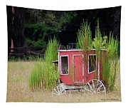 Abandoned In The Field Tapestry