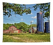 Abandoned Spring Farm Tapestry