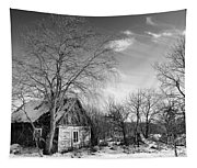 Abandoned Wooden Shack In Winter Tapestry